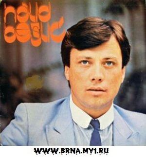 Pjesma samo o njoj (1982)