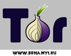 Tor Browser Bundle v2.2.37-1